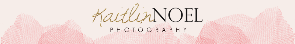 Kaitlin Noel Photography Blog logo